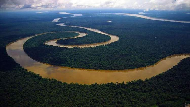 Photo: Colombian Amazon. Credit: Indigenous organization OPIAC